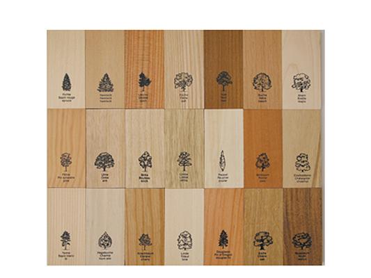 Holzkollektion_2_Naef_Spiele_AG_Lignum